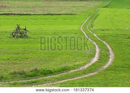 A field road leading through a green field.