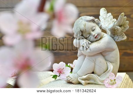 Angel and and spring flowers on wooden background