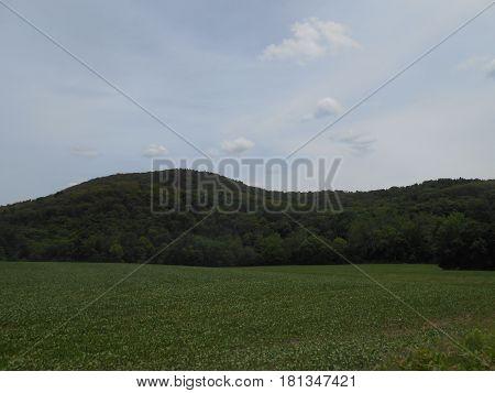 A  Green  Field  and  Rolling  Hills,  Kempton,  Pennsylvania.