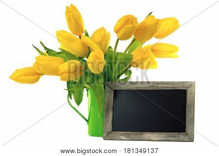Yellow Tulips with blank Blackboard on bright background