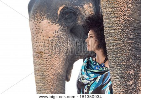 Young woman posing for fashion portrait with elephant isolated on white background