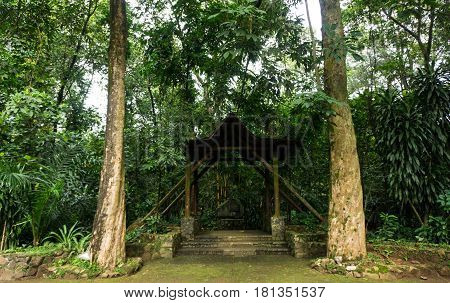 a gazebo for rest area between two big tree in the middle of green garden at Ragunan Zoo photo taken in Jakarta Indonesia java