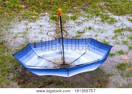 Upside down umbrella floating in a puddle collecting rain and leaves in a spring storm seasonal or bad luck concept