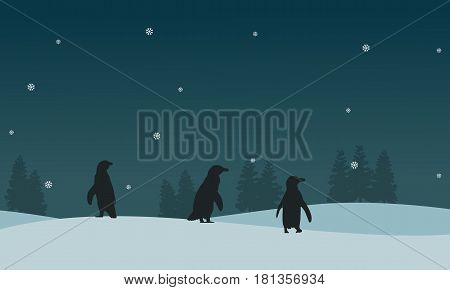 Silhouette of penguin on ice scenery vector illustration