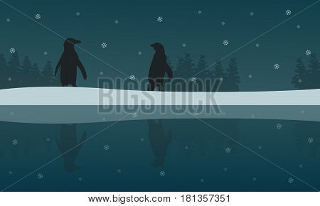 Silhouette of penguin with reflection scenery illustration