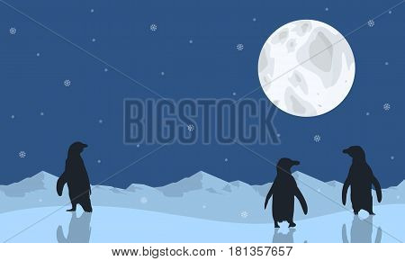 Penguin scenery with moon silhouettes vector illustration