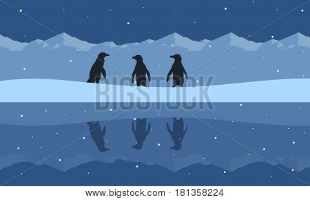 Silhouette of penguin beauty scenery on snow hill collection