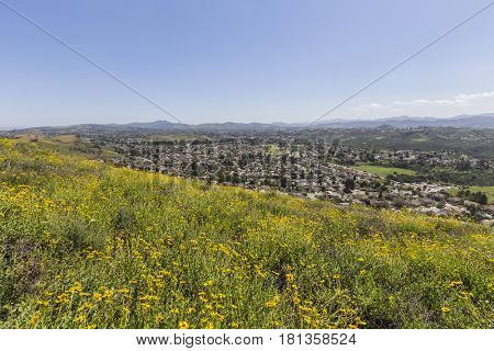 Flowering hillside view of Thousand Oaks in Ventura County, California.