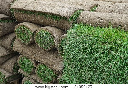 close up on stacking turf sod carpet roll