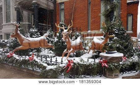 Christmas decorations reindeer covered in snow holiday season