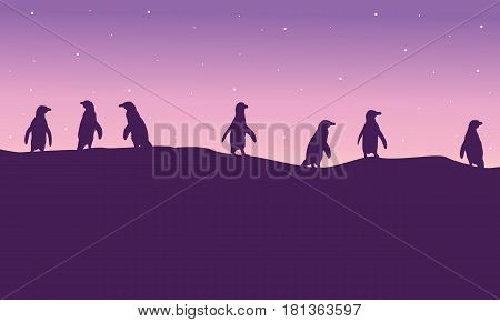 Lined penguin on hil scenery silhouette vector illustration
