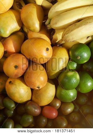Multicolour fruits group on tropical market. Mix of different fruits