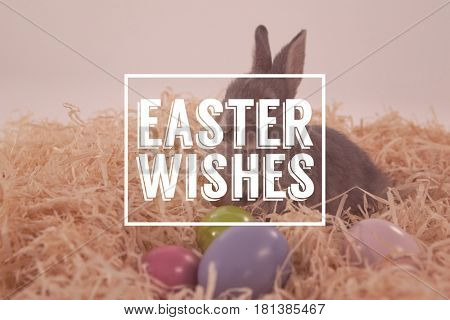 Easter greeting against easter eggs and easter bunny in the nest