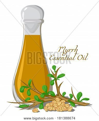 Bottle with essential oil of Myrrh with a branch and resin on the background