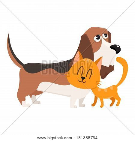 Basset hound dog and red cat, kitten characters, pets, friendship concept, cartoon vector illustration isolated on white background. Basset hound dog and red cat characters, friends