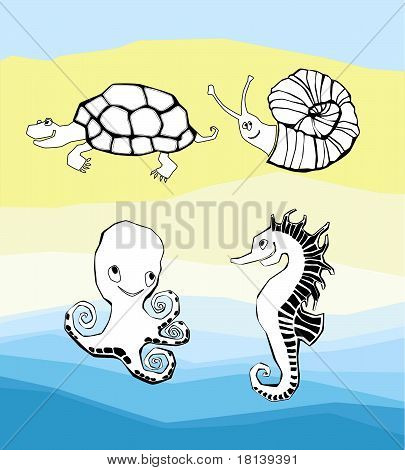 Turtle snail octopus and seahorse in the water and on the sand poster