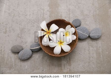 frangipani with spa stones in bowl on grey background.
