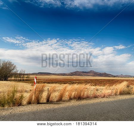 In South Africa  Land Bush       And  Grass