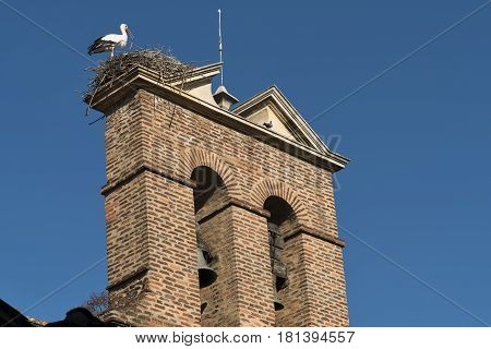 Leon (Castilla y Leon Spain): a stork in the nest at top of an old church belfry along the Calle Conde Luna at summer
