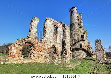Ruins of Zviretice castlefrom 14th century, Czech republic