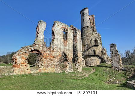 Ruins of Zviretice castle from 14th century, Czech republic