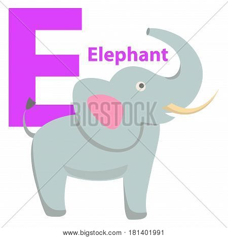 Children alphabet icon cartoon elephant letter E isolated on white. Large land mammal with long proboscis and sharp tusks. Vector illustration of funny ABC for kids with natural beast web banner.