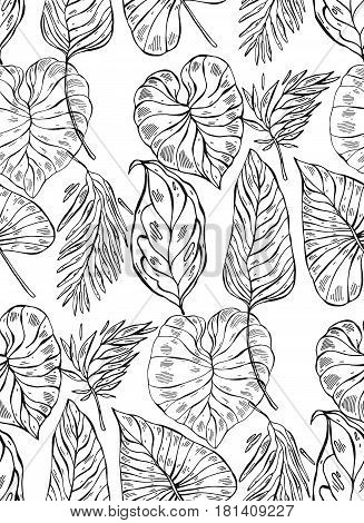 Tropical jungle seamless vector pattern with palm leafs on white background.Hand draw abstract texture summer illustration.Tropical exotic pattern.Colorful tropic art.Tropical background