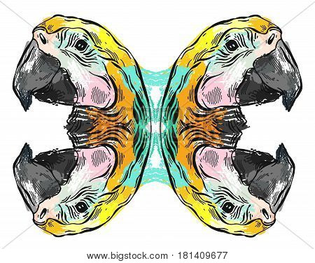 Tropical jungle template illustration with parrot mirror reflection on white background.Hand drawn abstract textured summer illustration.Summer tropical design element for patterncard designweb.