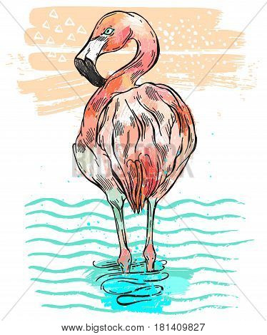 Hand drawn vecror colorful illustration of isolated pink flamingo which stands in blue wave water.Bird of paradise illustration.Tropical birds color card.Flamingo vecror illustration.