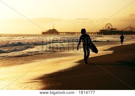 Californian Surfer