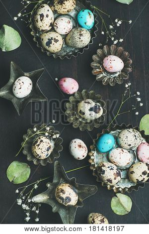 Colorful painted quail eggs in metal molds, dried wild flowers and leaves for Easter holiday over dark scorched wooden background, top view