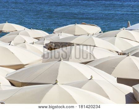 many umbrellas on the beach