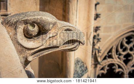 Stone bird like gargoyle in Toledo Spain