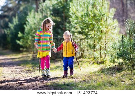 Kids Hiking In Autumn Forest