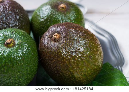 Green fresh avocado from organic avocado plantation - healthy food