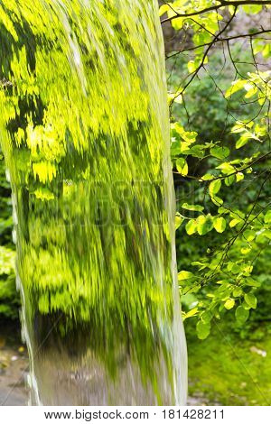 Close up view on falling water on green leaves background
