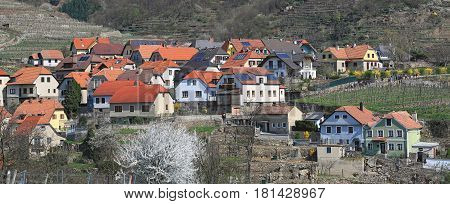 Market town of Weissenkirchen in der Wachau surrounded with terraced vineyards. Wachau-Valley, district of Krems-Land, Lower Austria.