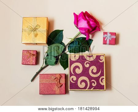 Gift boxes and rose flower on beige background