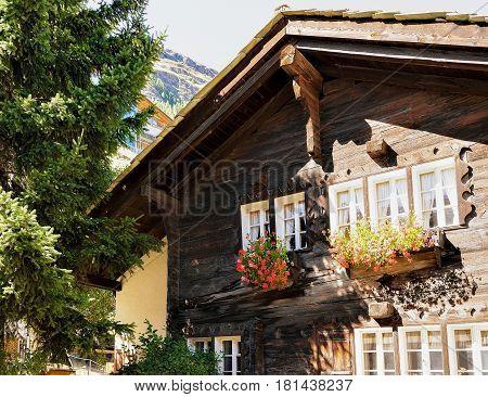 Chalet With Flowers On Balconies At Zermatt Resort Town Switzerland