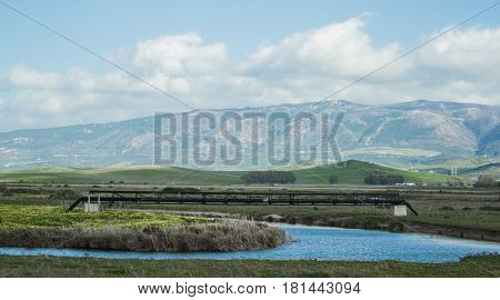 Blue Sky River Swamp Beauty Line