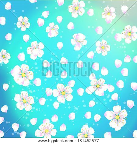 Spring Background Of Flowers With Apricot Petals