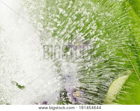 Tender fragile beautiful abstraction frozen in clear clear water with air bubbles on green organic background