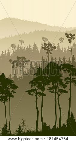 Vertical illustration of foggy coniferous forest hills.