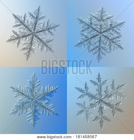 Macro photos of four real snowflakes: large and complex snow crystals of fernlike dendrite type with long, heavy arms, containing lots of side branches and small icy