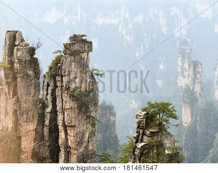 Amazing view of natural quartz sandstone pillars of the Tianzi Mountains (Avatar Mountains) in the Zhangjiajie National Forest Park, Hunan Province, China.