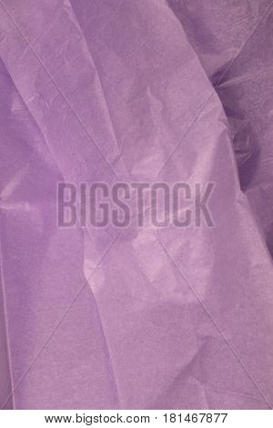 This is a closeup photograph of Purple Tissue paper