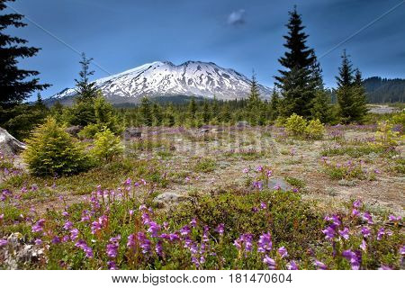 Mount Saint Helens peak in Washington state
