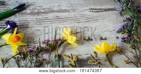 Beautifu yellow daffodils, lilac irises and pussy-willow branch. Little spring flowers on a whigt wooden background.