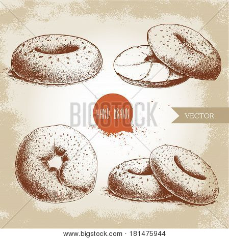 Hand drawn sketch style sesame bagels set. Bagel sliced bagel with cream cheese. Daily fresh bakery illustration. Vintage drawing of fresh breakfast.