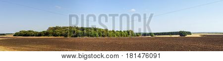 Fild of the earth for agriculture panoramic landscape